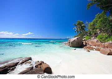 idyllisch, strand, in, seychellen