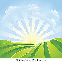 idyllisk, grön, fält, med, solsken, stråle, och blåa, sky