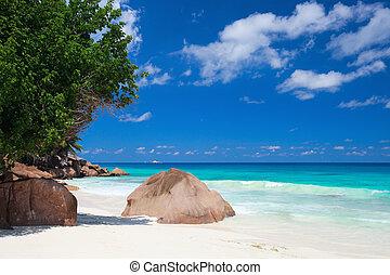 idyllisk, seychellerna, strand