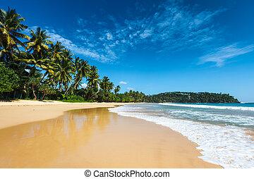 idyllisk, strand., lanka, sri