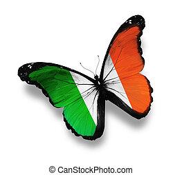 ierse , witte vlag, vrijstaand, vlinder