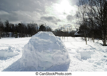 Igloo detail image in a snowy landscape