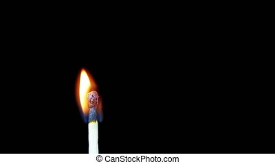 Igniting Match and Flame on a Black Background. Close-up....