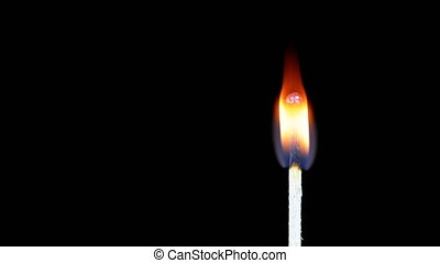 Igniting Match and Flame on a Black Background
