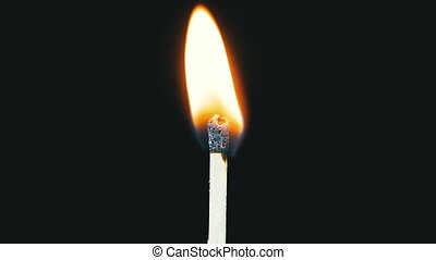 Igniting Match and Flame on a Black Background. Slow Motion....