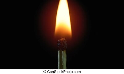 Igniting Match and Flame on a Black Background. Slow motion...