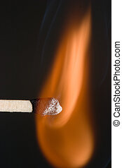 Close-up of a match as it first catches fire.