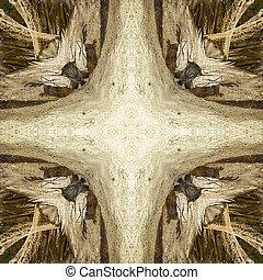 iguana abstract 4