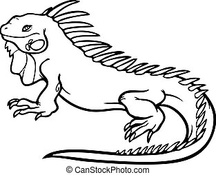 Iguana - an outline of an iguana