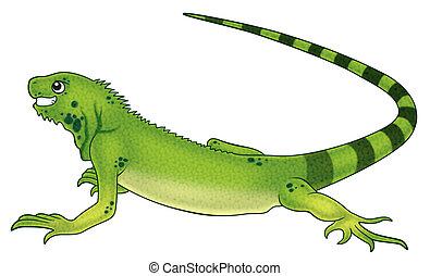 iguana cartoon illustration for kids.