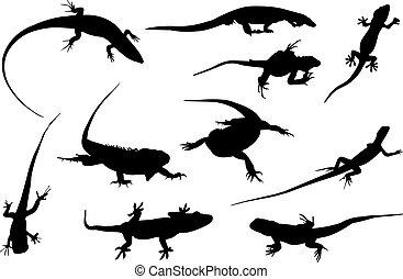Iguana Silhouette vector illustration