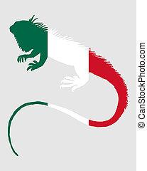 iguane, mexique