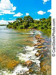 iguazu, rainforest, トロピカル, アルゼンチン, 落ちる