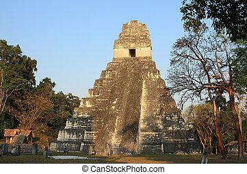 ii, tikal, 寺院, guatemala., dawn.