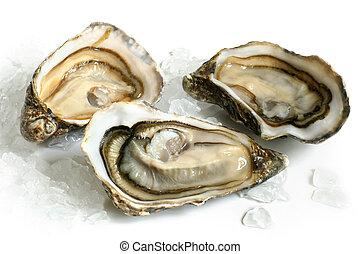 ijs, oesters, rauwe