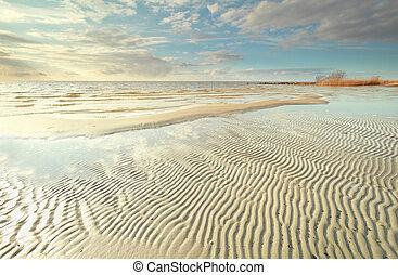 Ijsselmeer lake coast at low tide