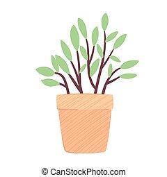 ikon, pot, natur, gul, keramik, hus, forår, plante, sæson