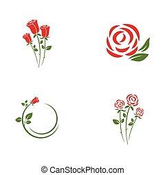 ikona, piękno, kwiat, wektor, róża