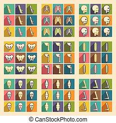 ikonen, skelett, sätta, skugga, mänsklig, länge, lägenhet