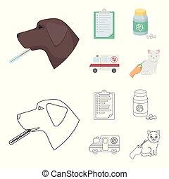 ikonen, veterinär, stil, klinik, block, symbol, tecknad film, web., illustration, skissera, sätta, sjukhus, kollektion, vektor, termometer, .vet, hund