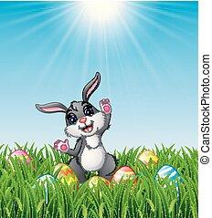 ikra, fű, húsvét, karikatúra, üregi nyúl