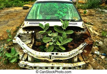 il, automobile abbandonata