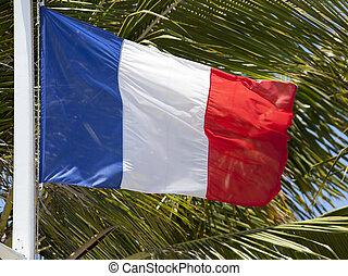 il, bandiera, di, nuova caledonia
