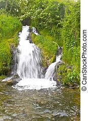 il, bello, cascata, in, foresta,