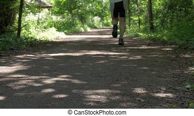 il, extérieur, activities., autour de, gens, walk., ensoleillé, scandinave, jour, sentier, course