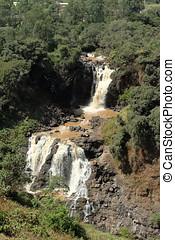 il, nilo, cascata, tisissat, in, etiopia