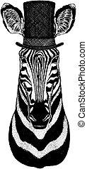 il portare, cima, hipster, cappello, animale, selvatico, cylinder., zebra