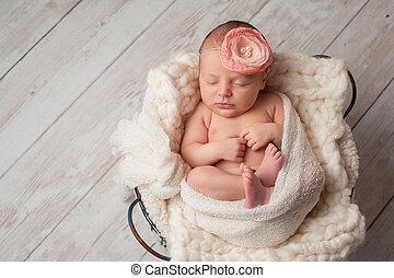 il portare, fiore, neonato, bambino, ragazza, fascia