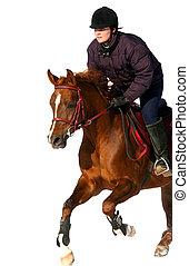 il, ragazza, il, equestre, salti, su, uno, cavallo
