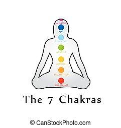 il, sette, chakras, con, loro, rispettivo, colori, e, nomi
