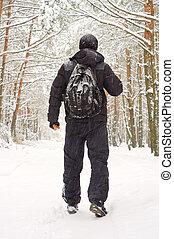 il, uomo cammina, in, inverno, foresta