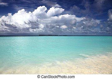 ilha, paisagem, em, maldives