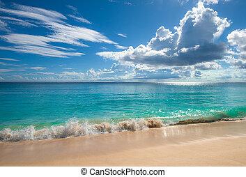 ilha tropical, praia., perfeitos, férias, experiência.