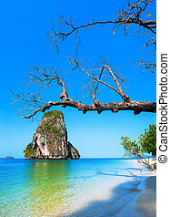 ilha tropical, vista., tailandia, natureza, paisagem., railay, praia, krabi