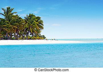 ilha, um pé, aitutaki, lagoa, cozinhe ilhas, paisagem