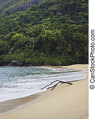 Ilhabela Island, Brazil - Brazil, State of Sao Paulo,...