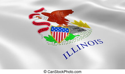 Illinoisan flag in the wind