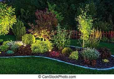 Illuminated Garden by LED Lighting. Backyard Garden at Night...