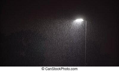Illuminated Public Lamp in Dark Night Heavy Rain - ULTRA HD...