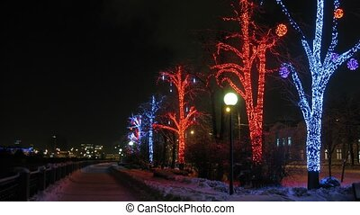 Illuminated trees near road in winter, time lapse - Nice...