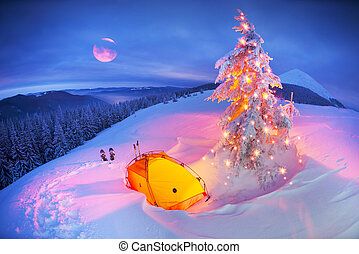 Illuminated winter forest in the Carpathians - Journey ...