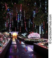 illuminations, parc, noël