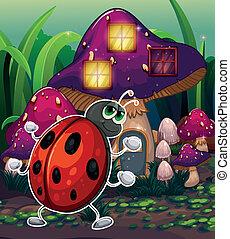 illuminato, casa, insetto, fungo, fronte
