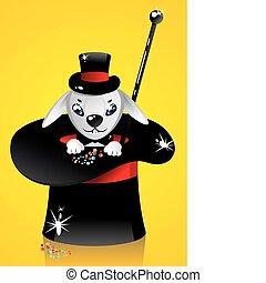 illusionist hat