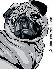 illustré, chien