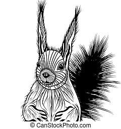 illustr, 頭, ベクトル, リス, 動物